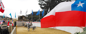 Fiesta de la Chilenidad 2011 v1.0